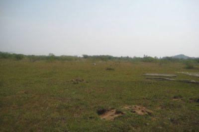 100MW-Mahaboobnagar
